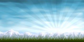 Grasrijk alpien landschap Stock Afbeelding
