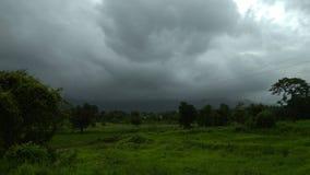 Grasrijk die landschap door donkere clouda in de schaduw wordt gesteld stock foto