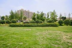 Grasrijk gazon en bloeiende tuin vóór woningsgebouwen in su stock afbeeldingen