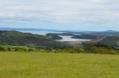 Grasrijk gebied in Waiheke Nieuw Zeeland Stock Fotografie
