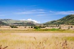 Grasrijk landschap Royalty-vrije Stock Afbeeldingen