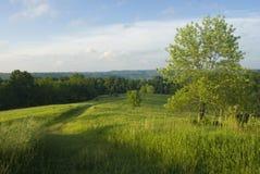 Grasrijke Heuvel Royalty-vrije Stock Foto