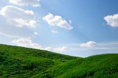 Grasrijke Heuvels onder Blauwe Hemelen Stock Fotografie
