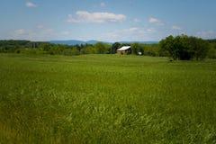 Grasrijke Landbouwgrond Royalty-vrije Stock Foto's