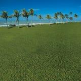 Grasrijke oceaanmening Stock Foto