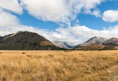 Grasrijke vlaktes in de Pas Nationaal Park van Arthur, Nieuw Zeeland royalty-vrije stock afbeelding
