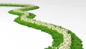 Grasrijke weg met bloemen Stock Afbeeldingen