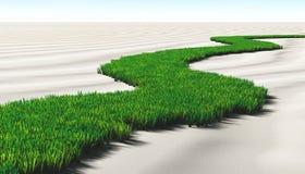 Grasrijke weg op het zand Stock Fotografie