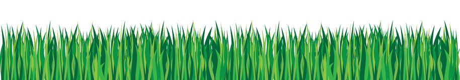 Grass. Vector grass with different shades of green Royalty Free Stock Images