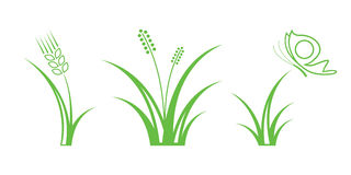 Grass. Green Nature Icons. Part 1 - Grass Royalty Free Illustration