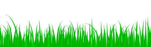 Cartoon Spring Summer Landscape Header Stock Photos, Images ...