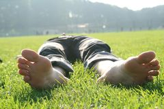 On the grass Royalty Free Stock Photography
