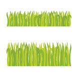 Grass. Short grass and long grass in the field Royalty Free Stock Images