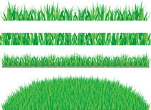 Grass. Set grass backgrounds, vector illustration Stock Photo