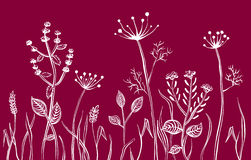 Grass. Wild grass on a claret background. A silhouette royalty free illustration