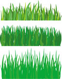 Grass. 3 illustration of grass isolated Stock Image