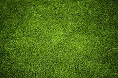 Grass. Abstract Natural Green Grass Texture royalty free stock photography
