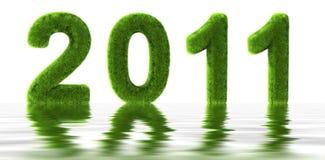 Grass 2011 Stock Image