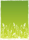 Grass. Work with vectors,illustration Royalty Free Stock Images