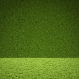 Grass. Floor and wall of green grass Royalty Free Stock Photos