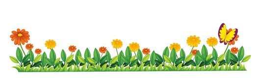 Grass. Illustration of grass and flower element Royalty Free Stock Photo