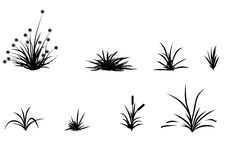 Grass. That can be painted in any color Stock Photography