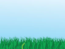 Grass. Vector illustration of grass and blue sky Royalty Free Stock Photos