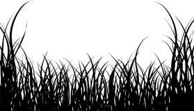 Grass. Vector illustration graas background for design usage Stock Images