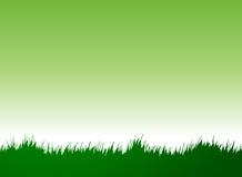Grass. Designed using illustrator look like original Royalty Free Stock Photography