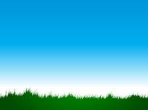Grass. Designed using illustrator look like original stock illustration