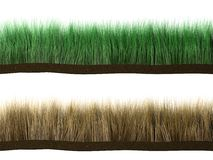 Grass. 3d rendered grass, fresh and dry Royalty Free Stock Photos