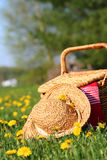 On the grass. A picnic on the grass with wicker basket and sun hat stock images