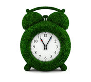 Grass alarm clock Royalty Free Stock Images