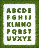 Grass alphabet Royalty Free Stock Photo