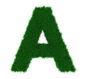 A grass letter. 3d illustration of a capital A, with grass covering it Royalty Free Stock Photo