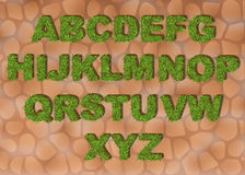 Grass alphabet depicting letters with spring green grass texture for education or ecological concept design. Eco font.  stock illustration