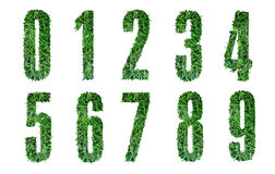 Grass Alphabet- numbers Stock Photo