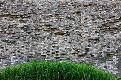 Grass and ancient wall Royalty Free Stock Image