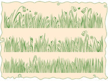 Free Grass And Flowers Royalty Free Stock Photo - 8811425