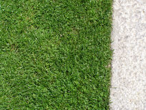 Free Grass And Gravel Texture Stock Photography - 6113942