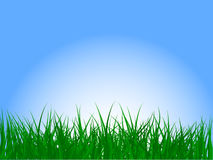 Free Grass And Sky Stock Photos - 5895423
