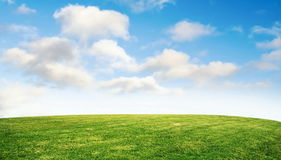 Free Grass And Sky Royalty Free Stock Photo - 67012695