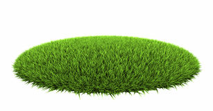 Grass Arena. Isolated on white background, 3d render vector illustration