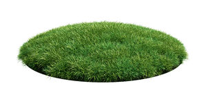 Grass arena Stock Photo