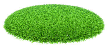 Grass arena isolated on white background Royalty Free Stock Photos