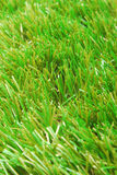 Grass artificial astroturf background. Close up of the grass artificial astroturf background Royalty Free Stock Photos