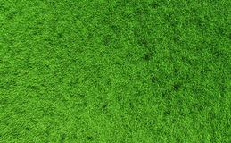 Grass backgound #1. 3D render - perfectly clean grass background; distant top view Stock Photo