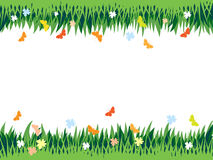 Grass background. Abstract composition, with space for text, grass, flowers and butterflies Royalty Free Stock Photo