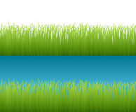 Grass Background. With copy space stock illustration