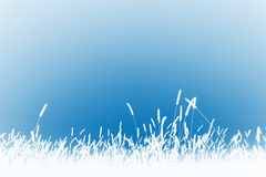 Grass background. A beautiful countryside background in blue Stock Image